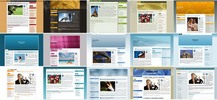 Thumbnail 100 Wordpress Blog Themes - Plr!